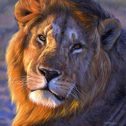 lion_s